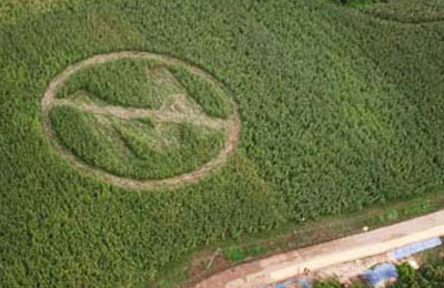 media:soup:no_monsanto_crop_circle.jpg